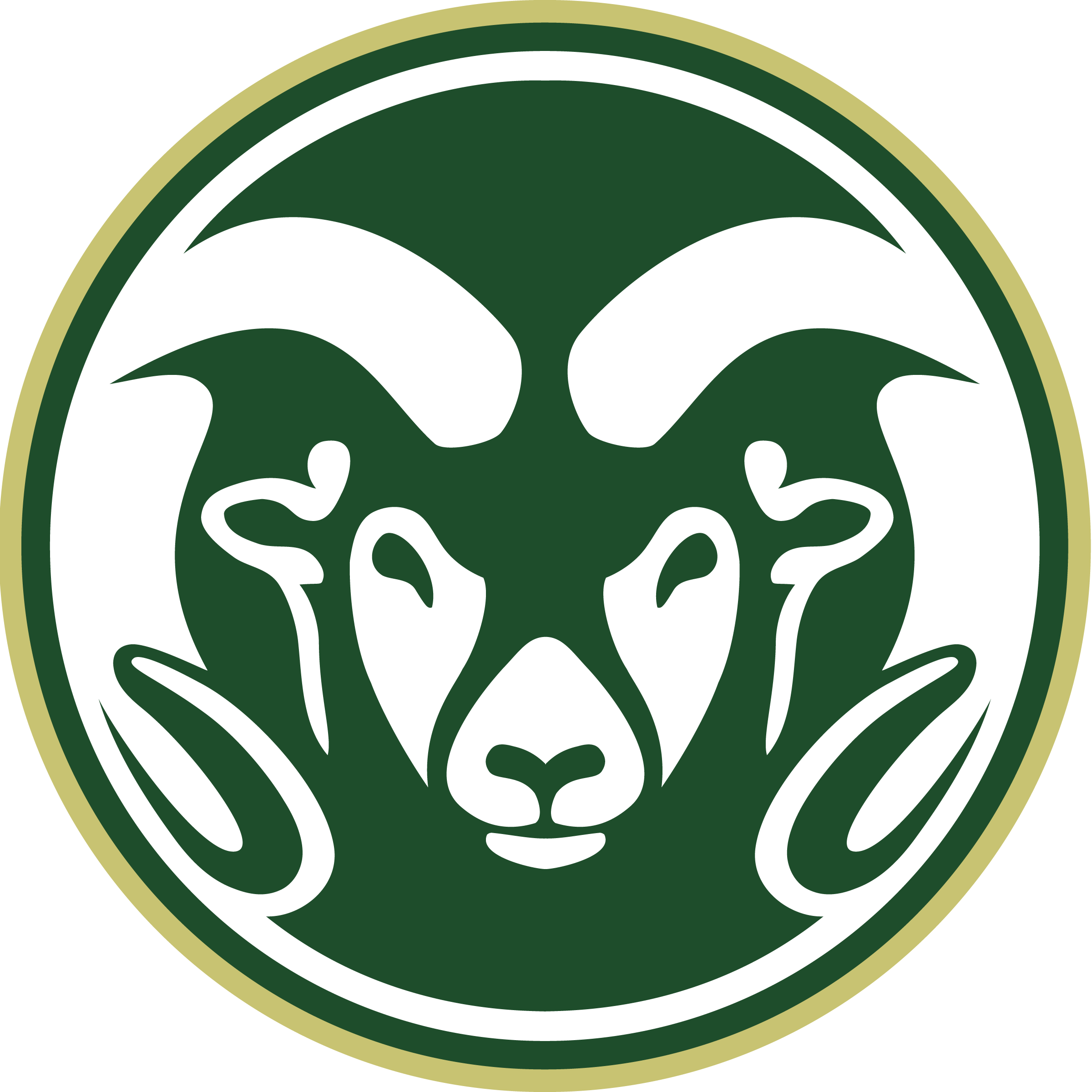 Colorado State logo, Helwig Carbon's Shaft Grounding Systems at Work in Universities